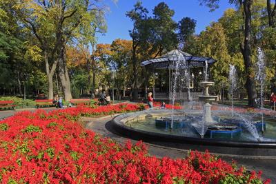 Fountain in City Garden, Odessa, Crimea, Ukraine, Europe Photographic Print by Richard Cummins