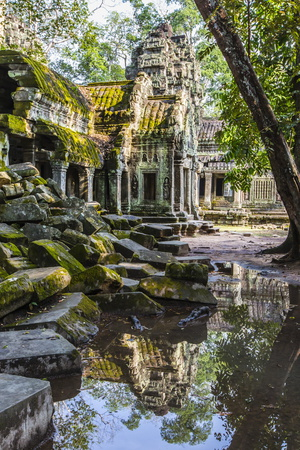 Reflections at Ta Prohm Temple (Rajavihara) Photographic Print by Michael Nolan