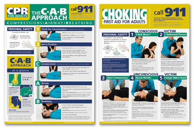 Adult CRP & Choking Poster Set-2 Prints