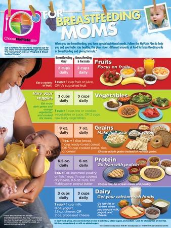 MyPlate for Breastfeeding Moms Poster Poster