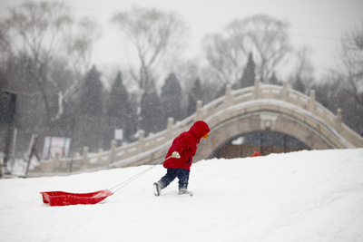 A Young Boy Pulls a Sleigh on the Snow at a Park Photographic Print by Diego Azubel