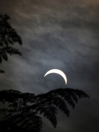A View of the Solar Eclipse as Seen from Baihatachariali About Kms from Guwahati City Photographic Print