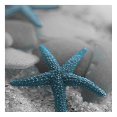 Blue Star Poster van Tony Pazan