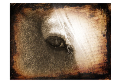 Sepia Horse 2 Prints by Suzanne Foschino
