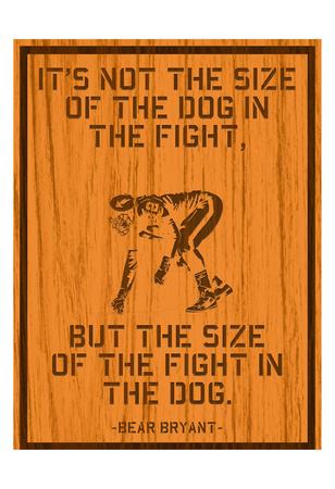 The Fight Prints by Tony Pazan