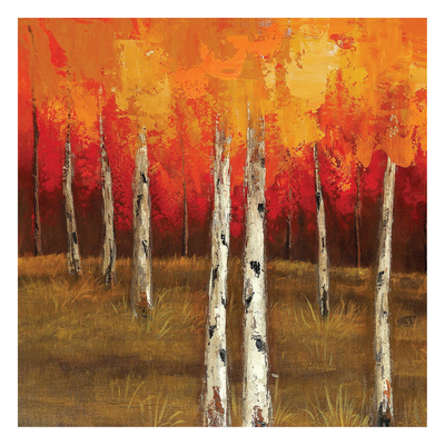 Golden Birch Trees 1 Posters by  Sunny