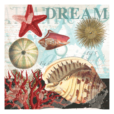 Red Dream Shells Posters by  Ophelia & Co.