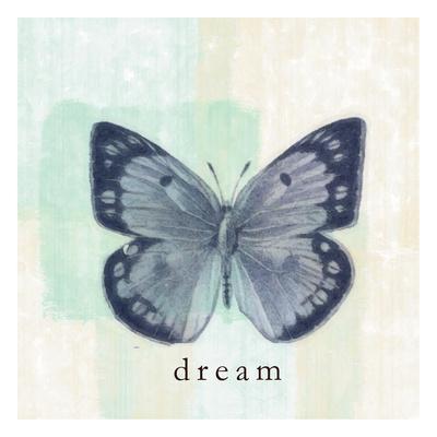 Butterfly Dream Art by Taylor Greene