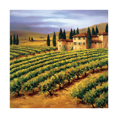 Villa in the Vinyards of Tuscany Giclee Print by Tim Howe