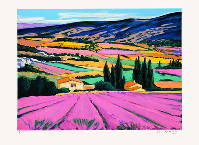 Provence : champs de lavandes Collectable Print by Jean Claude Quilici