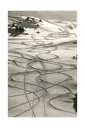 Ski Trails in Snow Poster