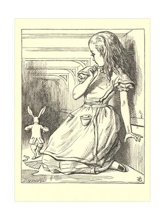Alice in Wonderland, White Rabbit Art