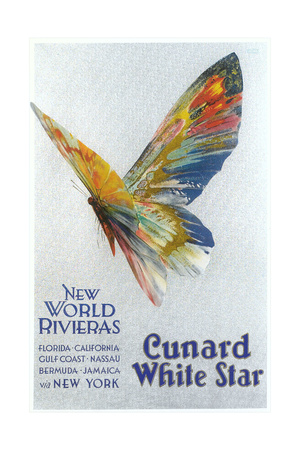 Butterfly, Ad for Cunard Line Poster