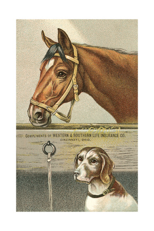 Horse and Dog Prints
