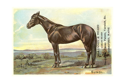 Sunol, Race Horse Posters