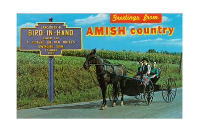 Greetings from Amish Country Posters