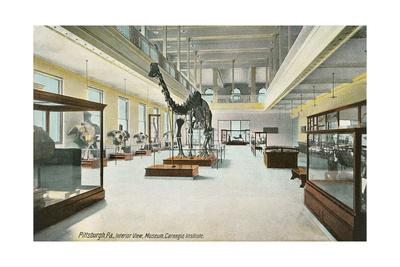 Carnegie Institute, Natural History Prints