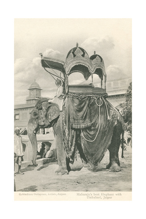 Royal Elephant with Howdah, India Posters