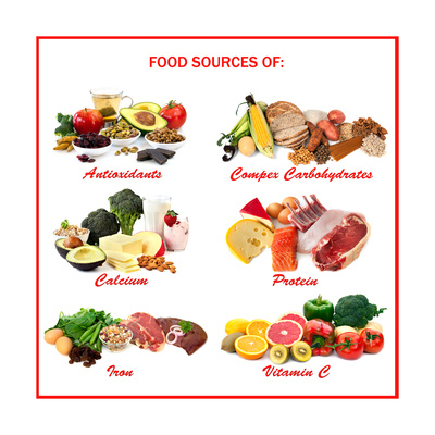 Chart Showing Food Sources of Various Nutrients Posters by Robyn Mackenzie