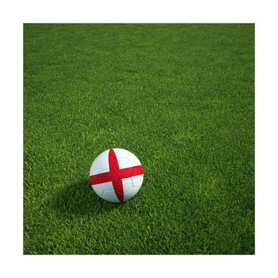 English Soccerball Lying on Grass Prints by  zentilia