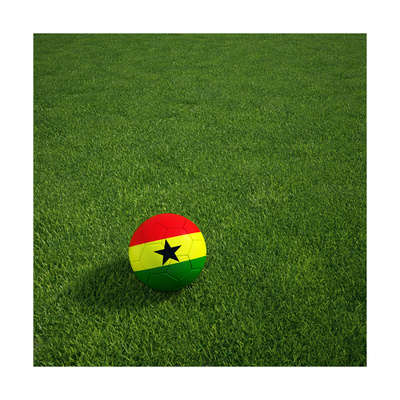 Ghanaian Soccerball Lying on Grass Poster by  zentilia