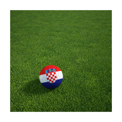 Croatian Soccerball Lying on Grass Print by  zentilia