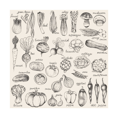 Hand-Drawn Vegetables Poster by  Nikiparonak