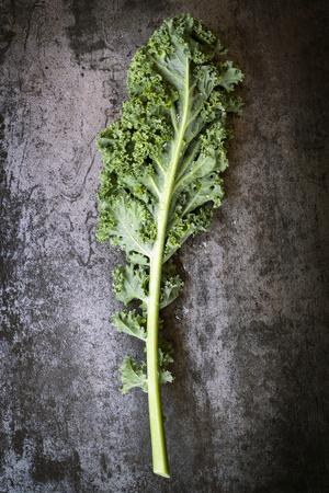 Kale Leaf, Overhead View on Dark Slate Photographic Print by Robyn Mackenzie