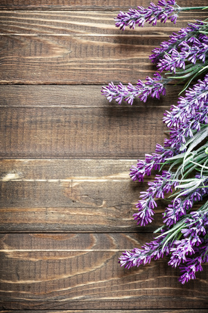 Lavender Photographic Print by Sea Wave