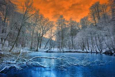 Spectacular Orange Sunset over Winter Forest Photographic Print by  paulgrecaud