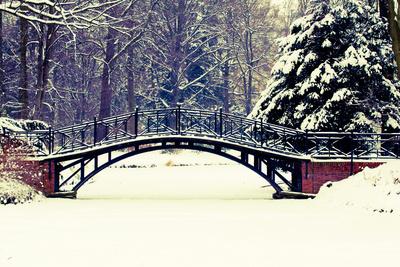 Winter Scene - Old Bridge in Winter Snowy Park Photographic Print by  Gorilla