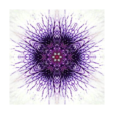 White Concentric Flower Center: Mandala Kaleidoscopic Prints by  tr3gi