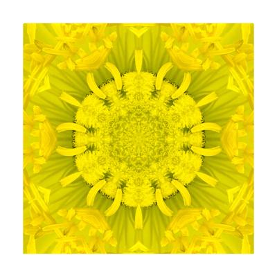 Yellow Concentric Flower Center: Mandala Kaleidoscopic Design Print by  tr3gi