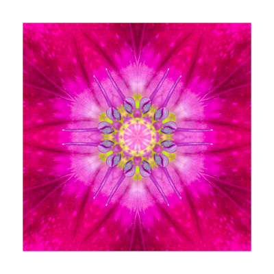 Purple Concentric Flower Center: Mandala Kaleidoscopic Design Posters by  tr3gi