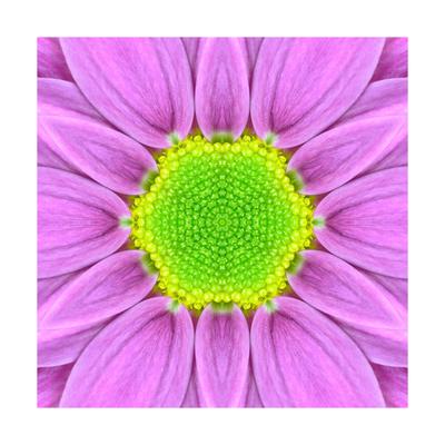 Pink Concentric Flower Center: Mandala Kaleidoscopic Prints by  tr3gi