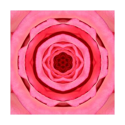 Pink Concentric Flower Center: Mandala Kaleidoscopic Design Art by  tr3gi