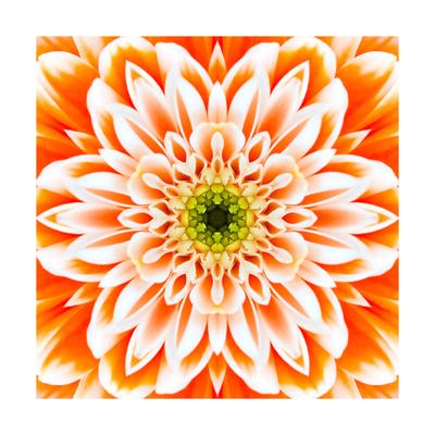 Orange Concentric Flower Center: Mandala Kaleidoscopic Design Posters by  tr3gi