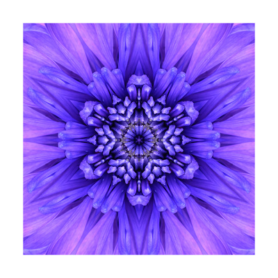 Blue Concentric Flower Center: Mandala Kaleidoscopic Poster by  tr3gi