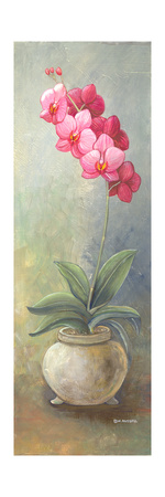 2-Up Orchid Vertical Prints by Wendy Russell