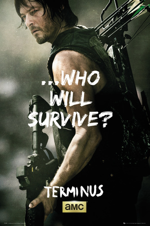 Walking Dead - Daryl Survive Stampe