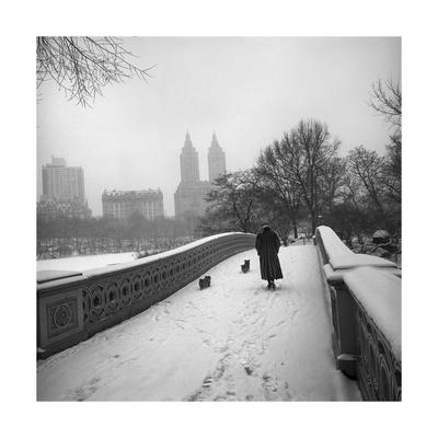 Bow Bridge Dogs, Central Park Photographic Print by Henri Silberman