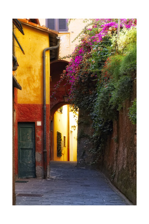 Colorful Alley in Portofino Photographic Print by George Oze