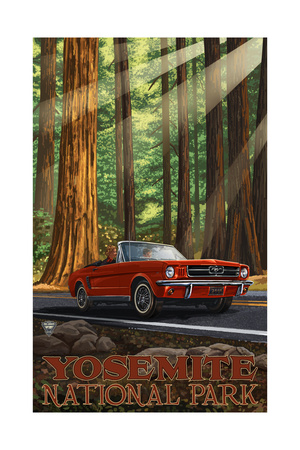 Picture of red mustang driving through Yosemite Valley forest on MIR road trip Yosemite artwork by Paul A. Lanquist