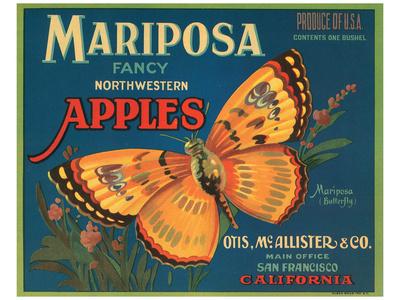 Mariposa Fancy Northwestern Apples Posters