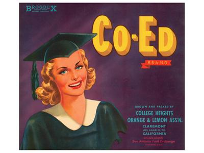 Co-Ed Brand Oranges and Lemons Art