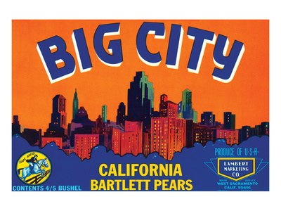 Big City California Bartlett Pears Art