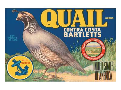 Quail Brand Contra Costa Bartletts Print