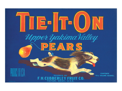 Tie-It-On Upper Yakima Valley Pears Posters