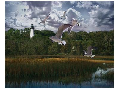 Gullage Light I Prints by Steve Hunziker
