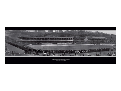 The Polo Grounds Print